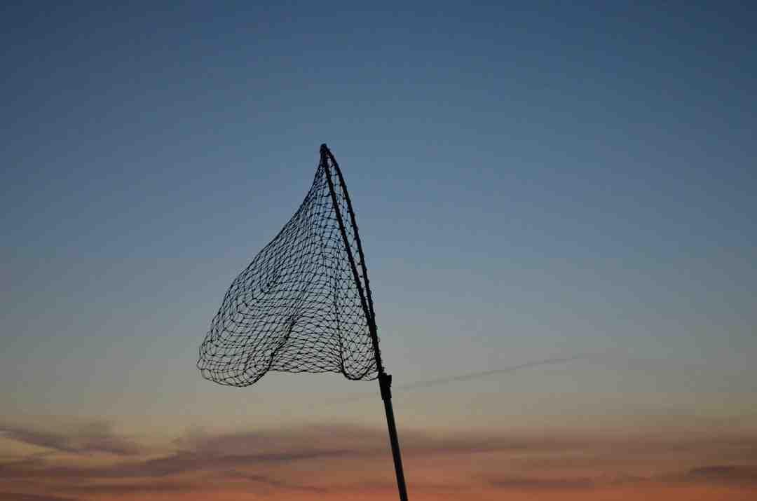 C'est quoi la puissance d'une canne à pêche ?