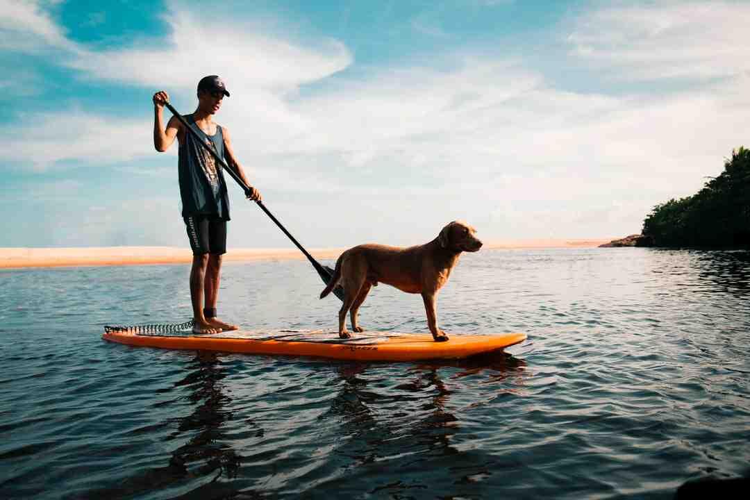 Comment choisir un paddle
