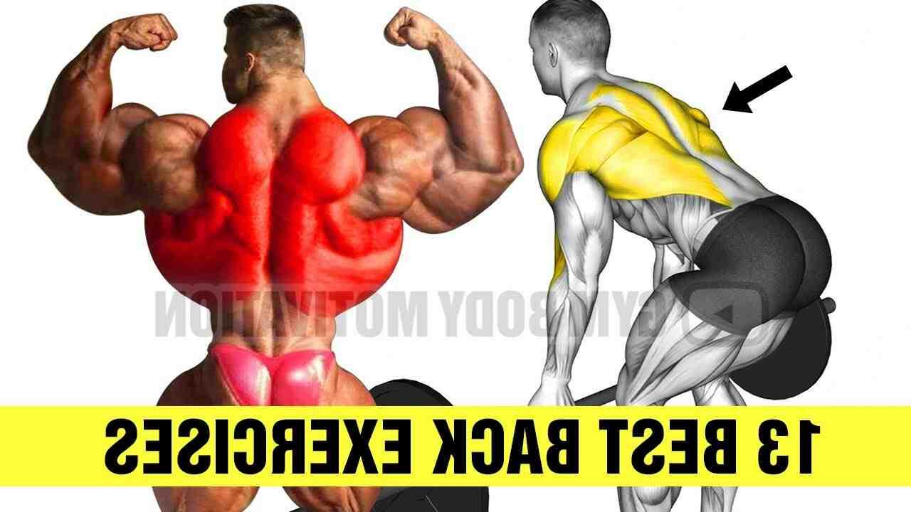 Comment se muscler le dos sans matériel ?