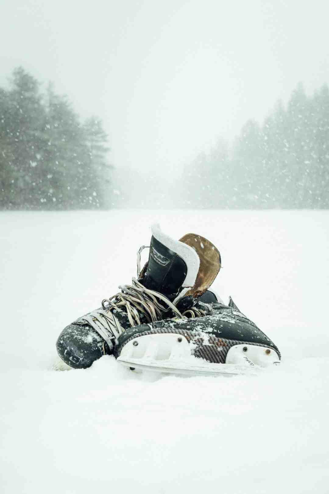 Pourquoi le hockey est populaire au Québec ?