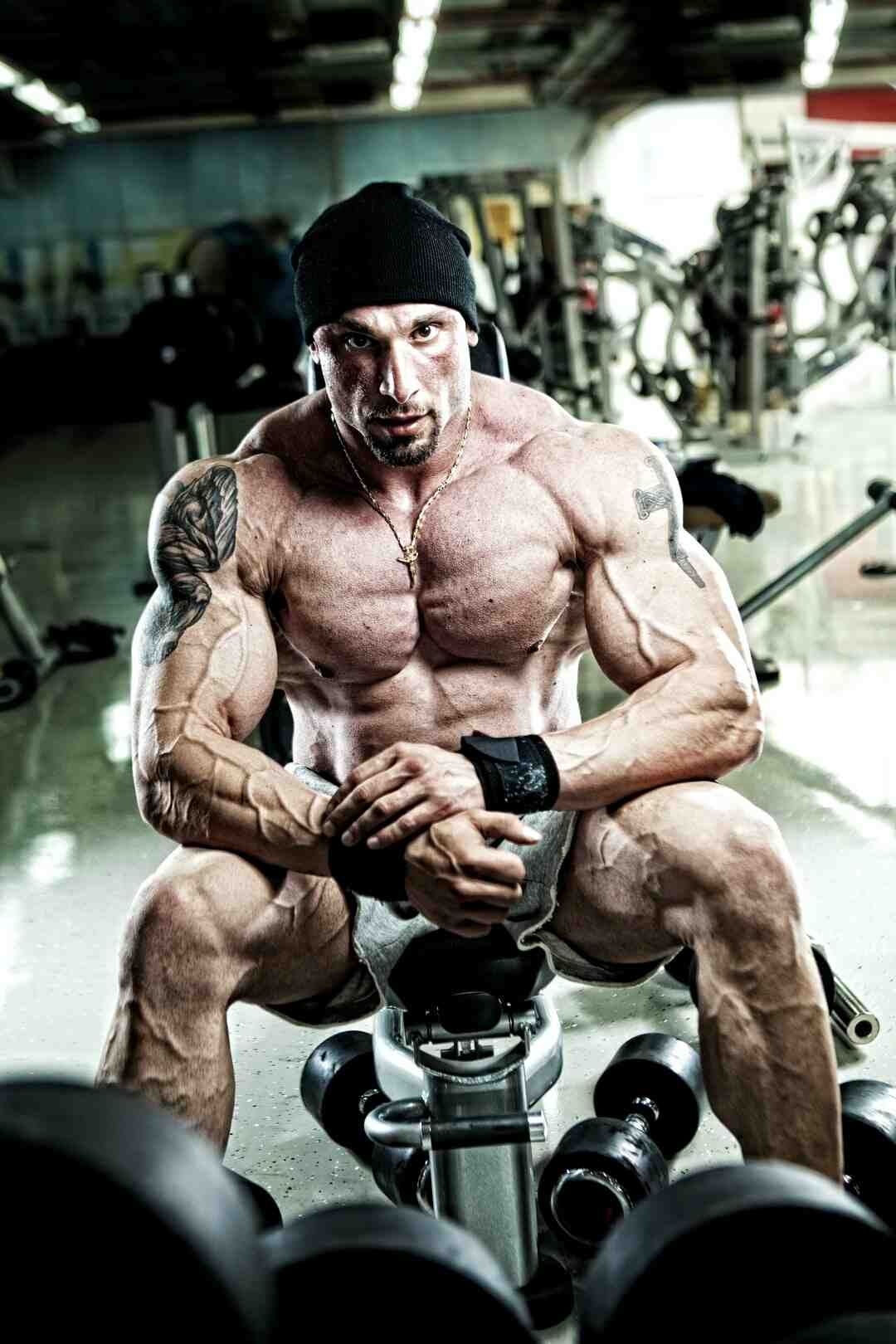 Programme musculation haut du corps